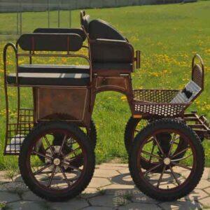 Carruaje Wagonette mixto Leica 012E