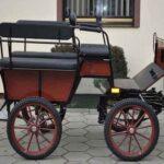 Carruaje Wagonette Wolf mixto 055B