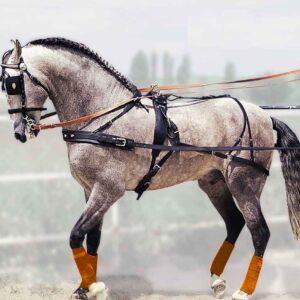 Enganche Pechopetral Hungara Sencillo Eco Pony Ng