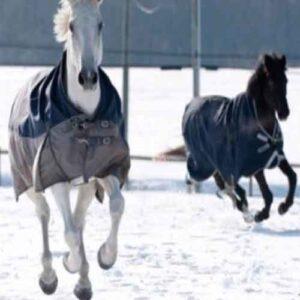 Manta Polar Deluxe Con Cinchuelo para caballo